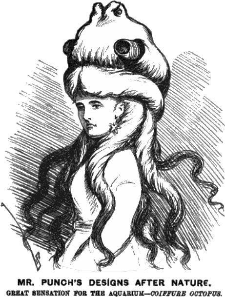 Mr. Punch's Designs After Nature. Great sensation for the aquarium -- Coiffure Octopus.